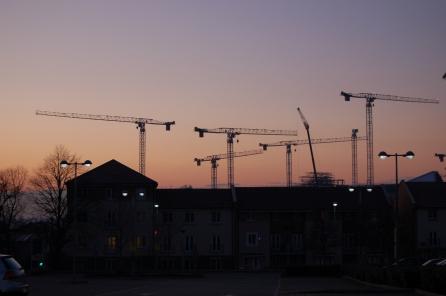 Dusk Cranes